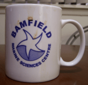Bamfield Coffee Mug