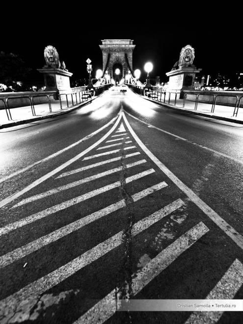Hungary - Budapest - Bridge