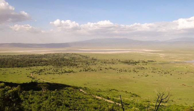 Uitzicht op Ngorongoro Crater
