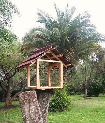 Vogelhuisje in tuin in Arusha