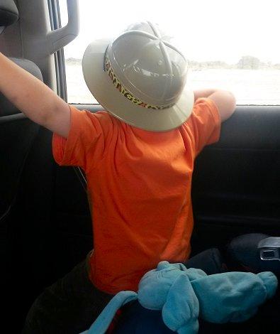 Op safari gaan in de vakantie