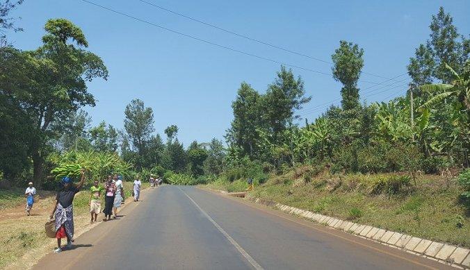 Met banaan langs de weg