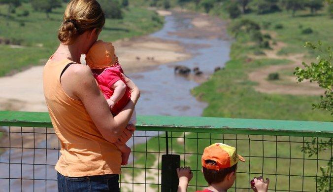 Olifanten kijken in Tarangire National Park