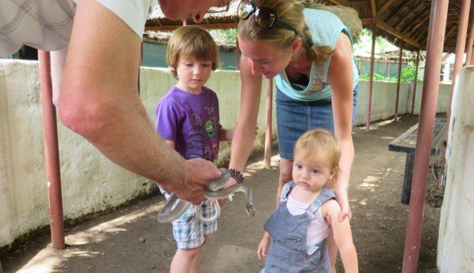Slang vasthouden in Meserani Snake Park