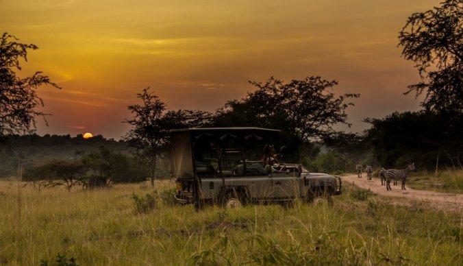 5 praktische tips voor jouw safari