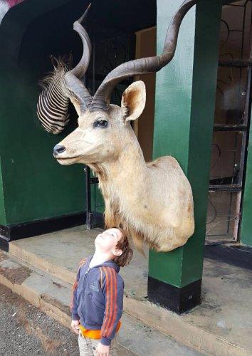 Op safari gaan - Nane Nane show in Arusha