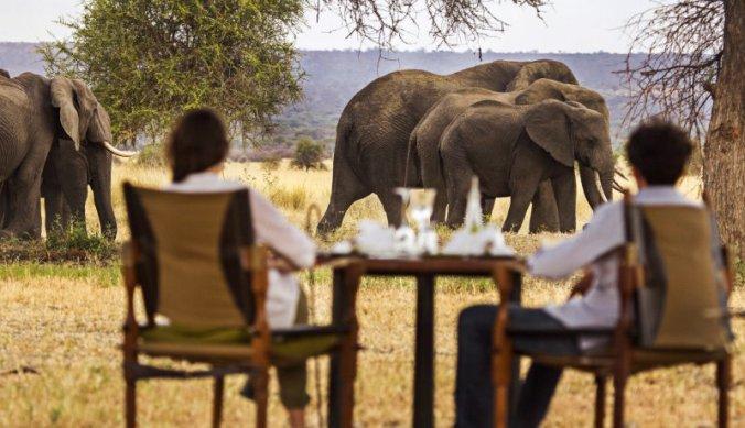 Bezoek van olifanten tijdens lunch bij Chem Chem Lodge