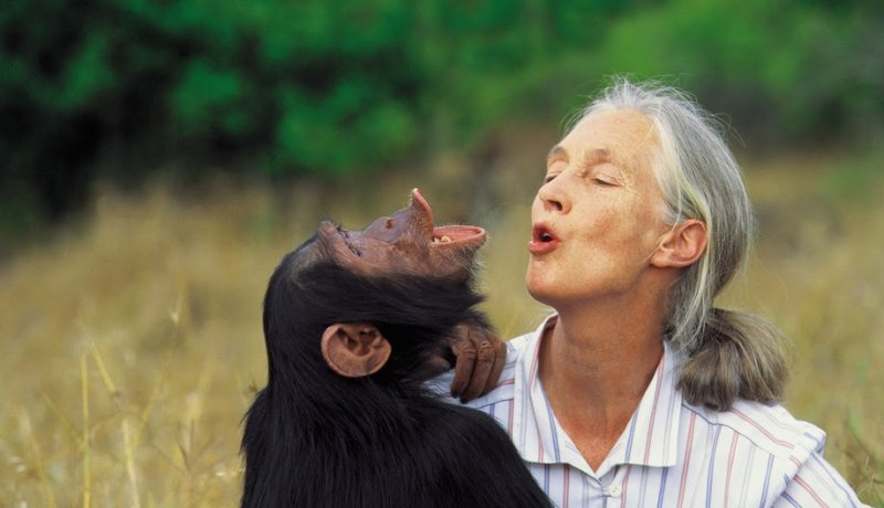 Een ontmoeting met Jane Goodall