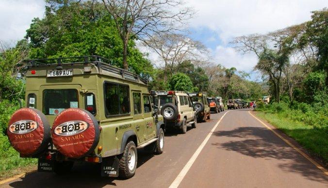 Lange file aan safariauto's voor de ingang van het nationaal park in Tanzania