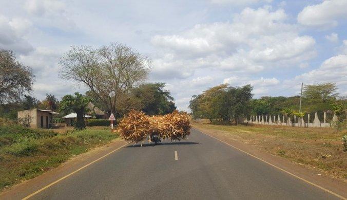 Mais oogst vervoerd op motortaxi in Tanzania