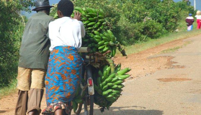 Bananen op de fiets in Afrika
