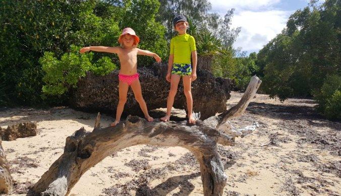 Aangespoeld wrakhout op ons eigen strandje