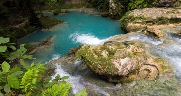tropical natural pool