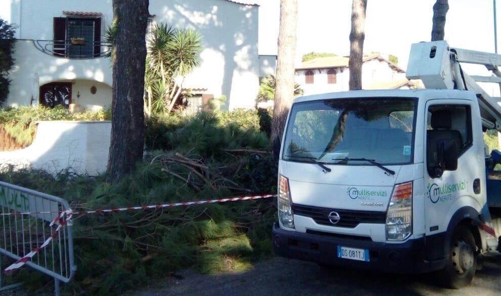 Cerveteri, 22 piantumazioni di alberi della Multiservizi Caerite a Cerenova e Borgo San Martino