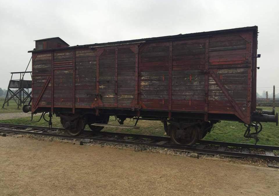 """Pd Anguillara sulla Giornata delle Memoria: """"Agghiacciante quanto successo ad Auschwitz"""""""