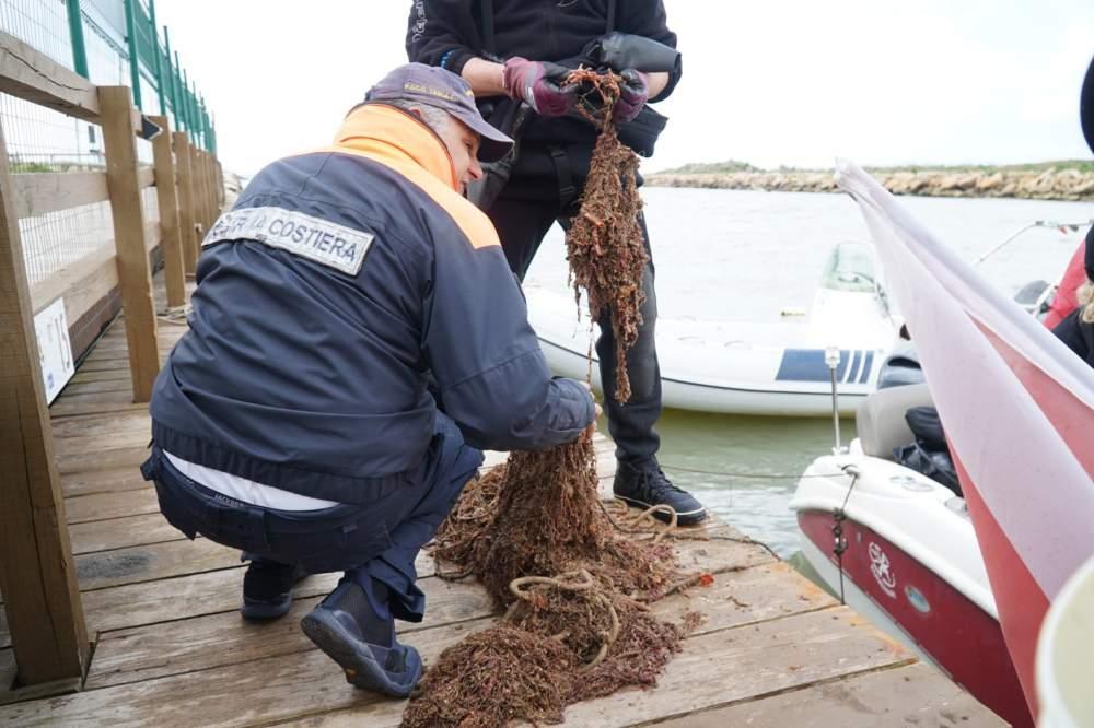 La Capitaneria di Porto di Civitavecchia è intervenuta per la salvaguardia e protezione dell'ambiente marino costiero e della sicurezza in mare.