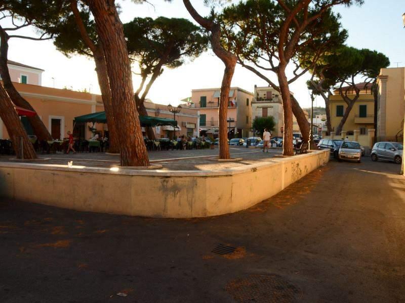 Santa Marinella, salvi (per ora) i pini di piazza Trieste