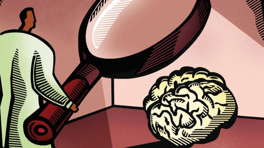 How the teenage brain develops