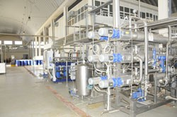 Banana and Tomato Processing factory - BANATOM