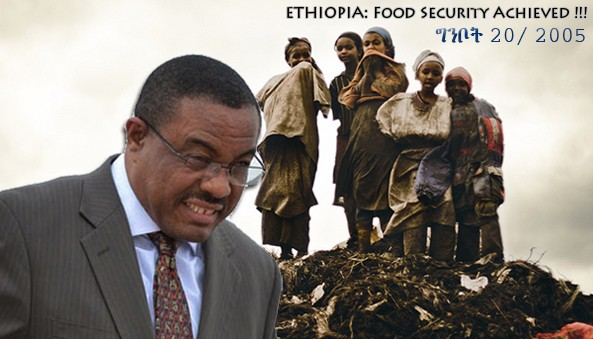 """""""Food Security at National Level achieved remain with the House hold level"""" - PM Hailemariam D."""