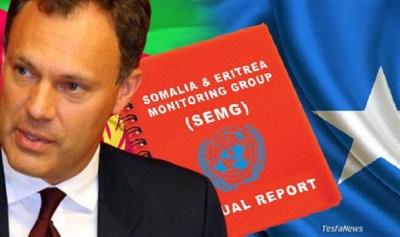 New Somalia Eritrea monitors