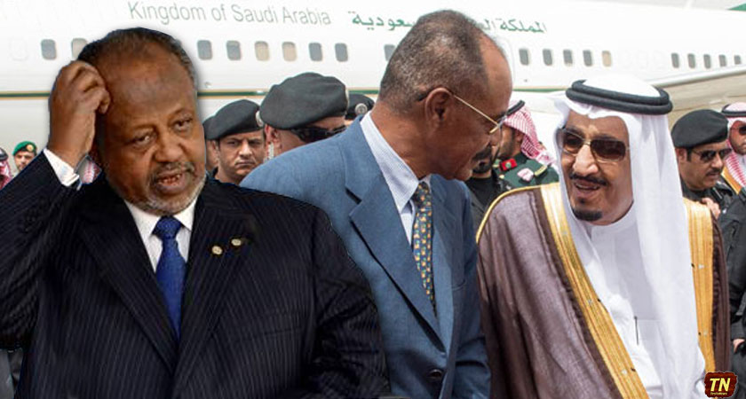 How Eritrea Benefits from the Diplomatic Crisis Between Djibouti and UAE