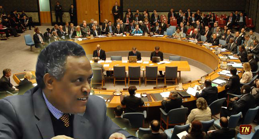 Statement made by Ambassador Girma Asmerom during Security Council debate
