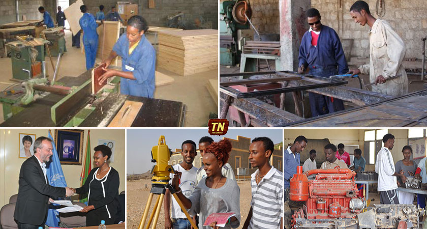 Youth Skills Development in Eritrea: Growth, Employment, Wellbeing