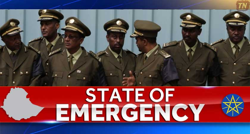 Image result for ethiopia state of emergency