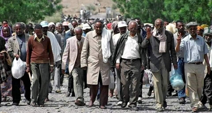 TPLF crimes against Eritrea and deportation of Eritreans from Ethiopia