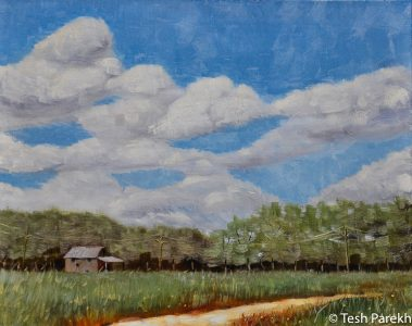 """Lenoir County"". 16x20. Oil on linen. Kinston NC Paintings"