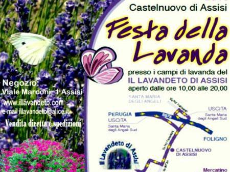 Festa_della_Lavanda