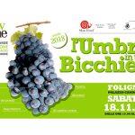 UmbriainBicchiere2017