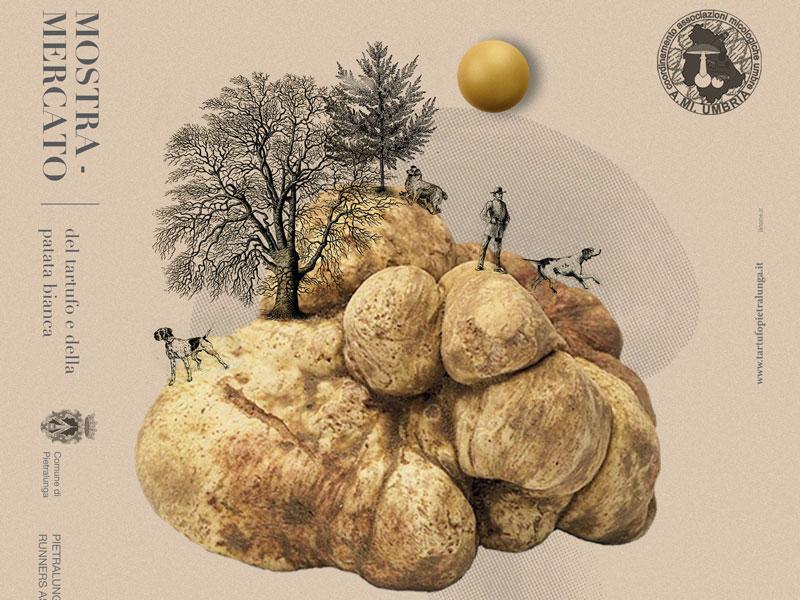 Mostra – Mercato del Tartufo e della Patata bianca di Pietralunga