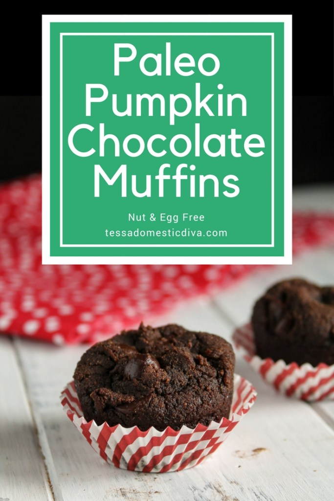 optimized for pinterest  chocolate muffins studded with chocolate chips in a white and red striped paper muffin liner