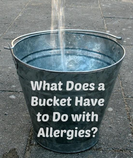 Histamine-Bucket: Think You Have Food Allergies?  Read THIS!