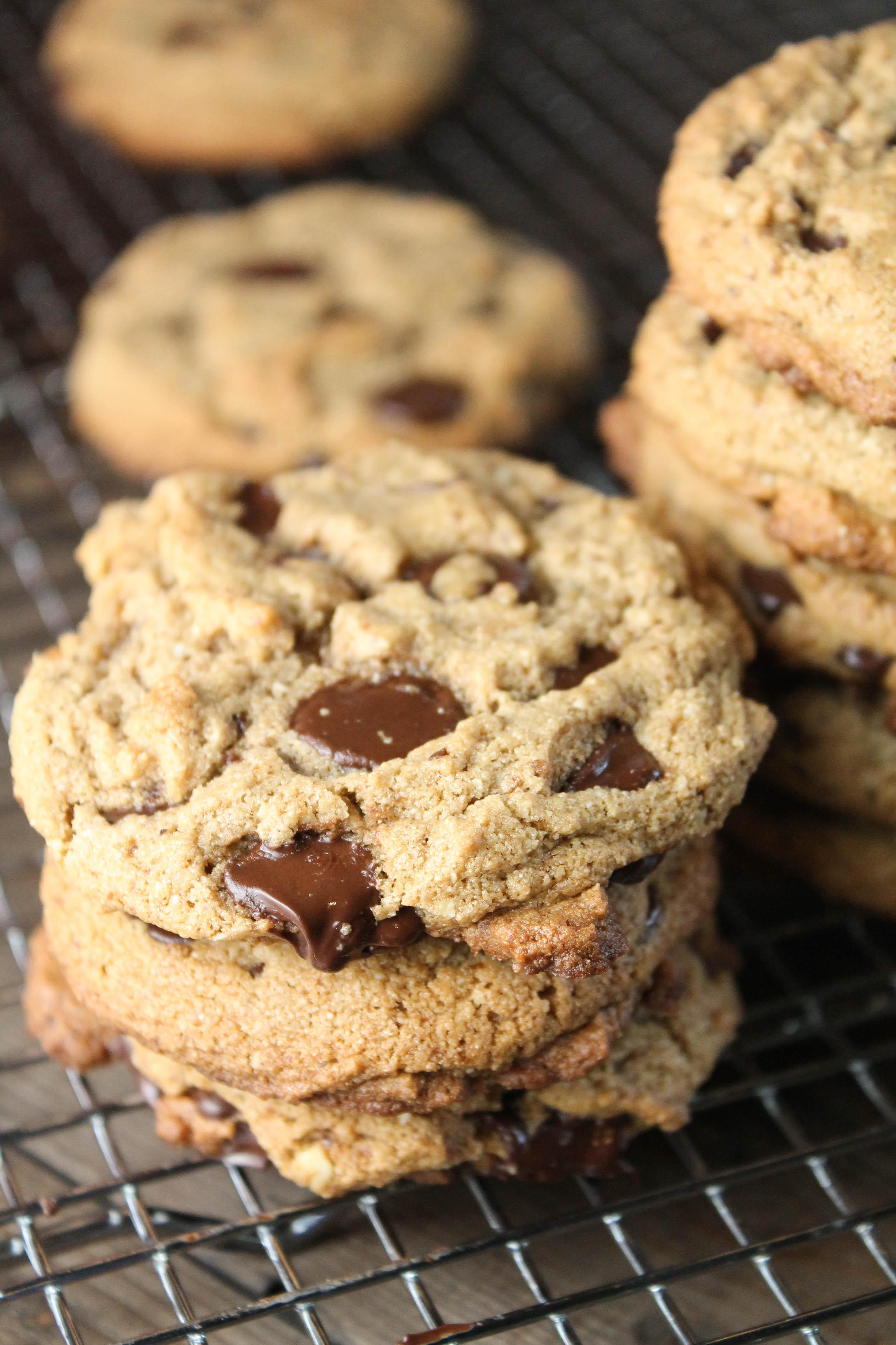 Paleo Chocolate Cookies The Best Paleo ...