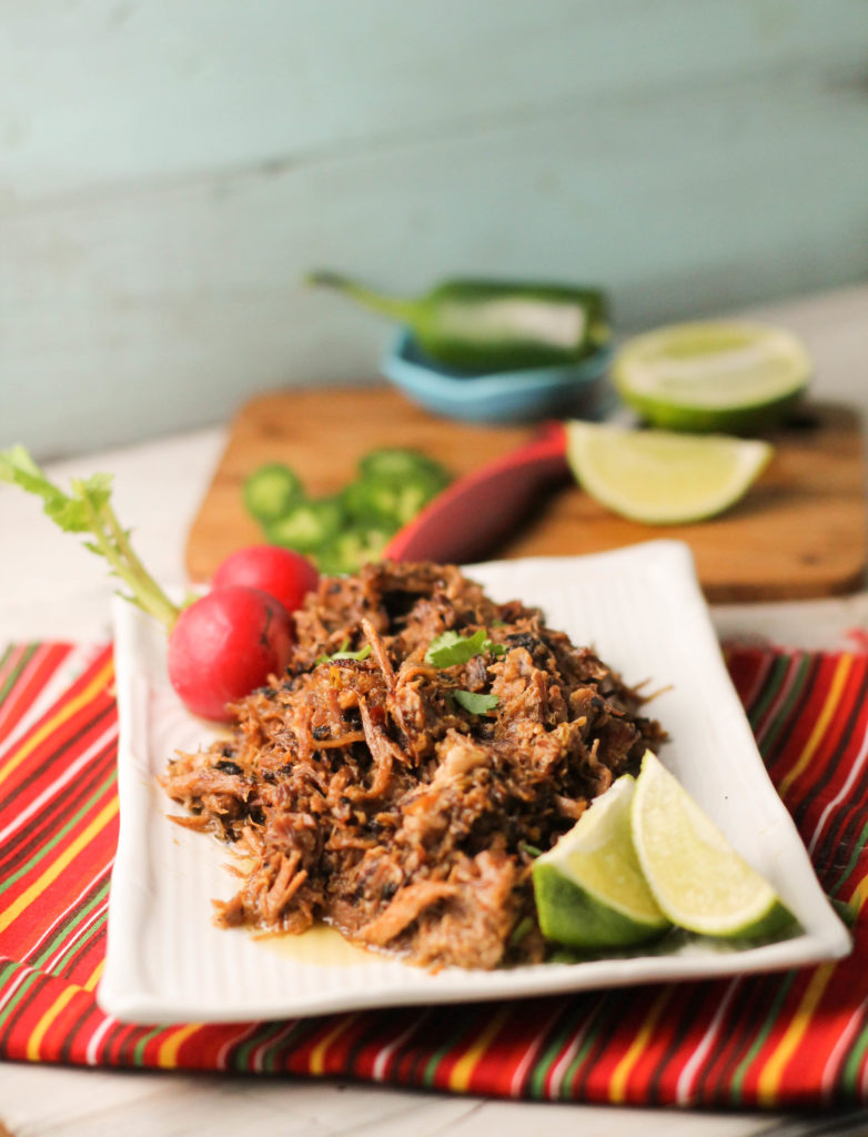 vertical image of shredded pork on a red striped cloth with an aqua background