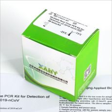 test PCR covid19
