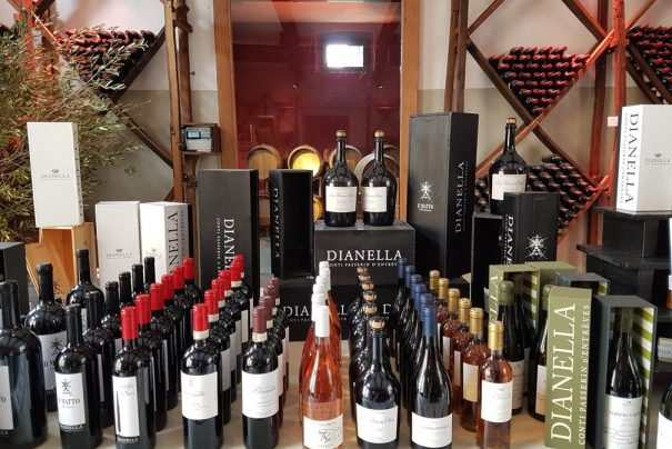 Tuscany winery tour with lunch: Dianella Chianti wine tour