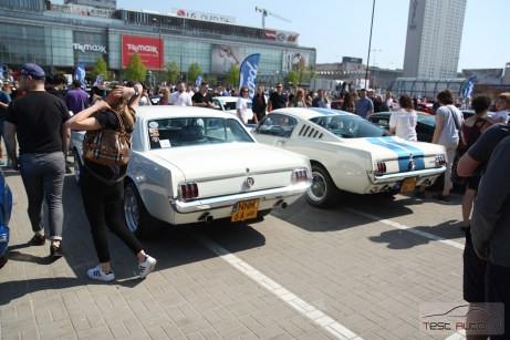 Zlot Ford Mustang (5)