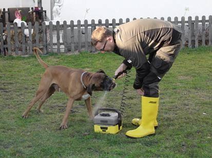 Testberichter: Mit Hund im Garten