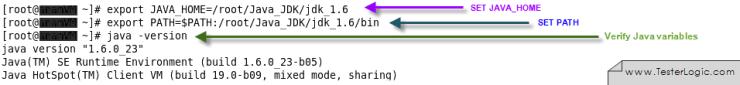 set Java environment variables Linux Terminal