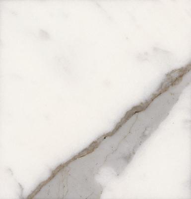 Bianco Statuario Venato Image