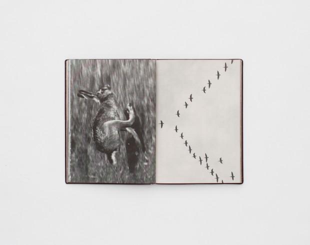Daniel-Gustav-Cramer-and-Haris-Epaminonda_The-Infinite-Library_Book-24-620x490