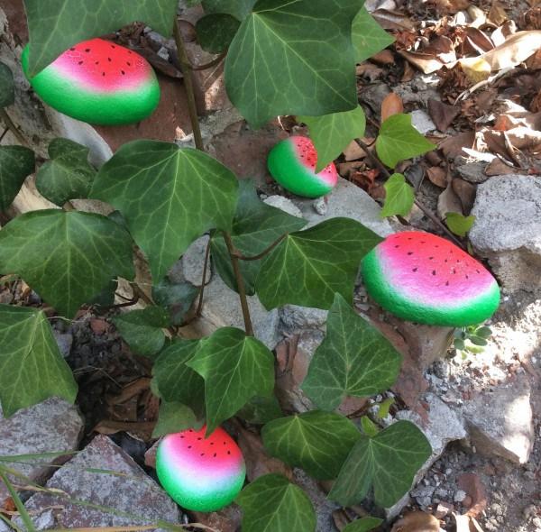 Rock Garden Supplies