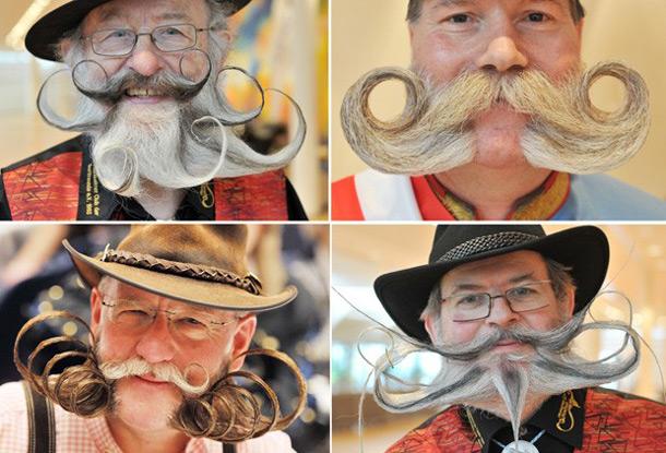 barbas2
