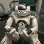 Curiosidade: Humanos tocam partes íntimas de robôs e se excitam