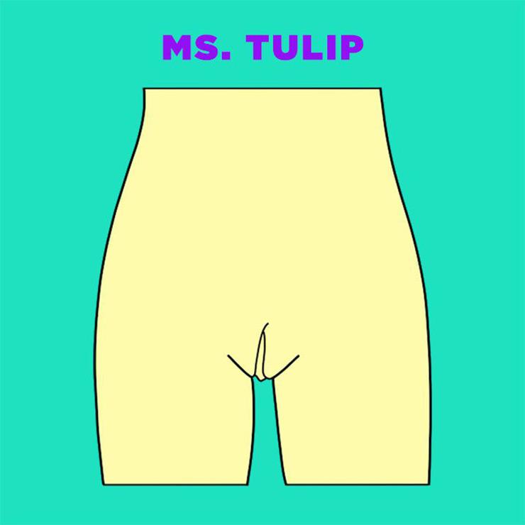 Vagina Tulipa