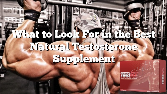 what to look for in the best natural testosterone supplement
